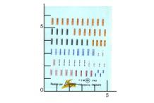 Décalcomanie Ceinture sécurité 1/43 (REF : 101)