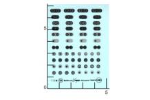 Décalcomanie Bouchons de réservoir 1/43 (REF : 154)